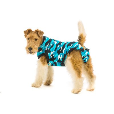 RevoverySuit_Dog_Blue3_Suitical-600×600